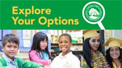 explore-your-options